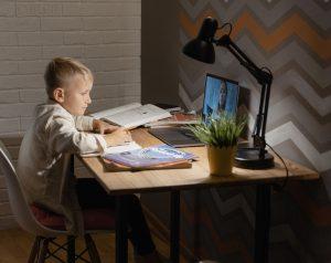 Психолог дала советы по организации дистанционного обучения дома